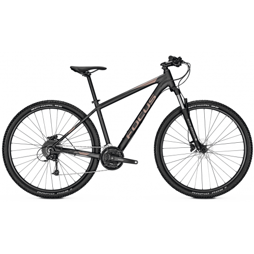 Alquiler bicicleta montaña (2 semanas + alforjas +retorno)